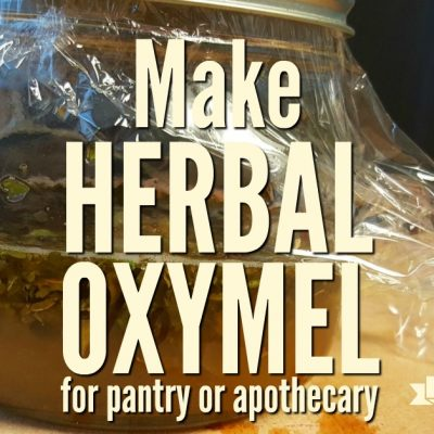 How to Make an Herbal Oxymel