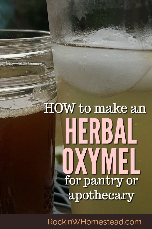 Learn how to make an herbal oxymel for the home apothecary and preserve your herb harvest as you retain beneficial herbal properties.