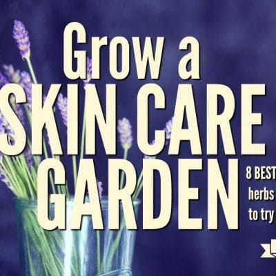 Grow These Herbs for a Skin Care Garden