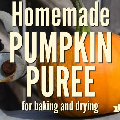 Make and Preserve Pumpkin Puree