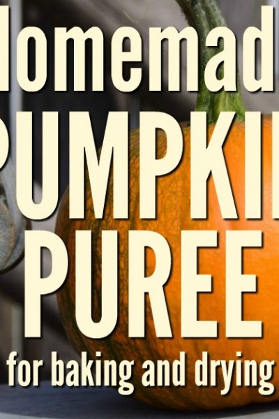It is easier than you think to make and preserve pumpkin puree. Take advantage of the sales and store it for months. Fall meals should not be without it!