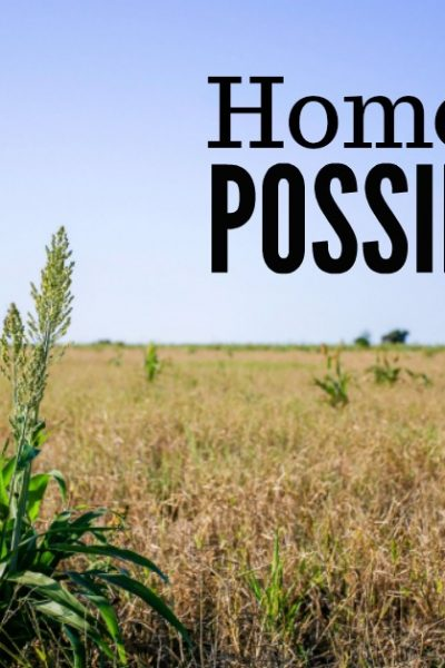 Full of homesteading possibilities. Do you have a plan in the back of your mind? One that you hope for, pray about, and study up on, but perhaps never really think it will come to fruition? Rockin W Homestead.com