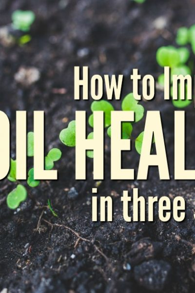 The pursuit of the perfect garden or pasture soil on your homestead may never be achieved, but you can make incremental changes each year toward the goal. Improve your soil in 3 steps with these easy to implement tips   Rockin W Homestead