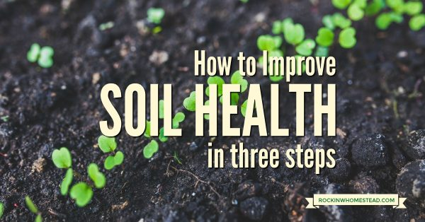 The pursuit of the perfect garden or pasture soil on your homestead may never be achieved, but you can make incremental changes each year toward the goal. Improve your soil in 3 steps with these easy to implement tips | Rockin W Homestead