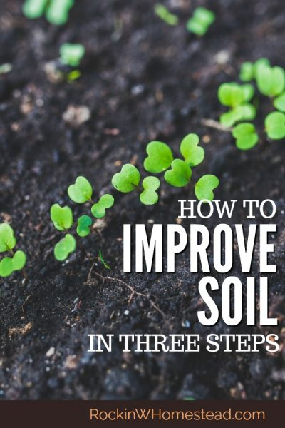 The pursuit of the perfecThe pursuit of the perfect garden or pasture soil on your homestead may never be achieved, but you can make incremental changes each year toward the goal. Improve your soil in 3 steps with these easy to implement tips | Rockin W Homestead