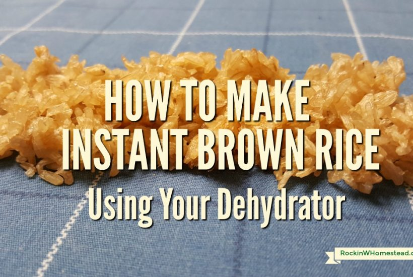 You can learn to make your own instant brown rice at home. This recipe uses a dehydrator to dry cooked rice and speed up the cooking time when you are ready to serve it for meals | Rockin W Homestead