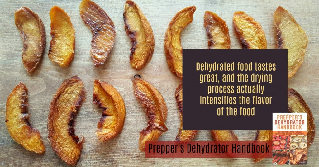 Prepper's Dehydrator Handbook by Shelle Wells