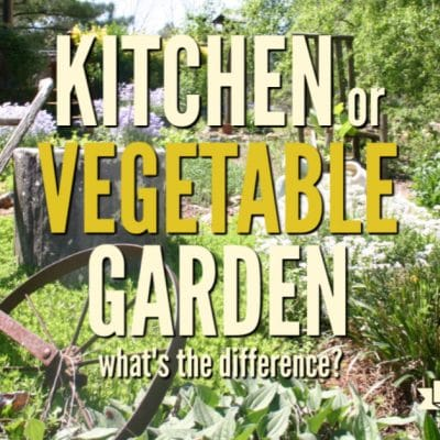 Kitchen Garden or Vegetable Garden, What's the Difference?