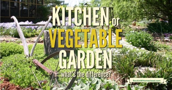 Have you ever wondered exactly what is in a kitchen garden is and how it differs from a regular vegetable garden? Plan and plant a productive kitchen garden today.