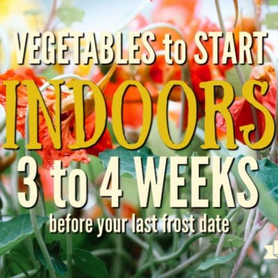 What to Plant Indoors 3 to 4 Weeks Before Your Last Frost Date