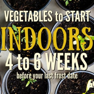 What to Plant Indoors 4 to 6 Weeks Before Your Last Frost Date