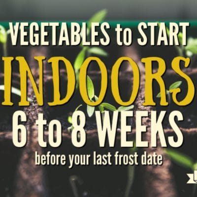 What to Plant Indoors 6 to 8 Weeks Before Your Last Frost Date