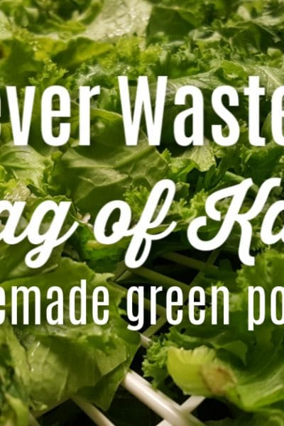 "greens on a dehydrator tray with te text overlay n""never waste a bag of kale again - homemade green powder"