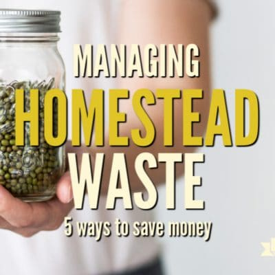 5 Ways Managing Homestead Waste Saves Money