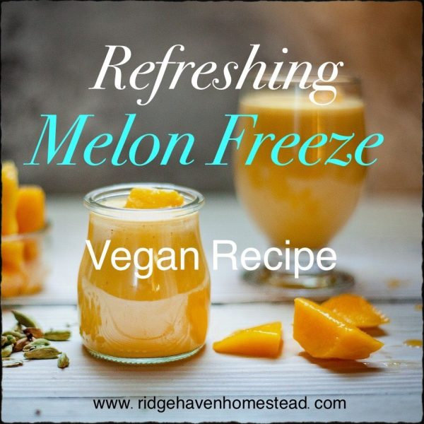 frozen treats melon freeze