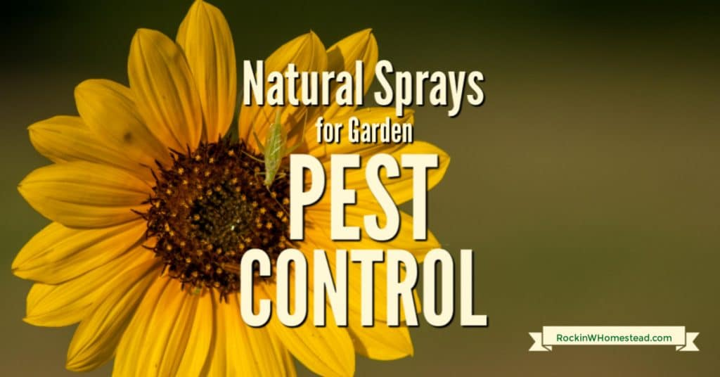 Whether you're growing a vegetable garden or a flower garden, finding the right pest control ensures a successful experience. When you keep pests out of the garden, you'll have beautiful flowers and a bountiful harvest.