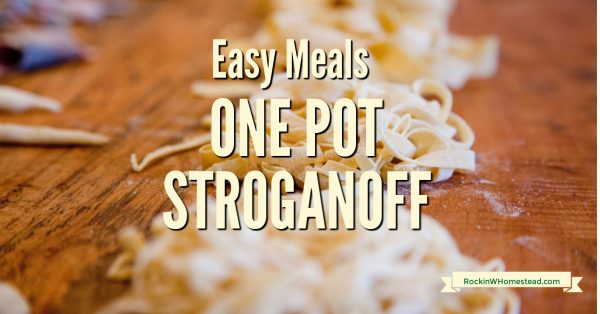 This One Pot Stroganoff recipe takes simple ingredients and brings them together for a tasty and quick meal.