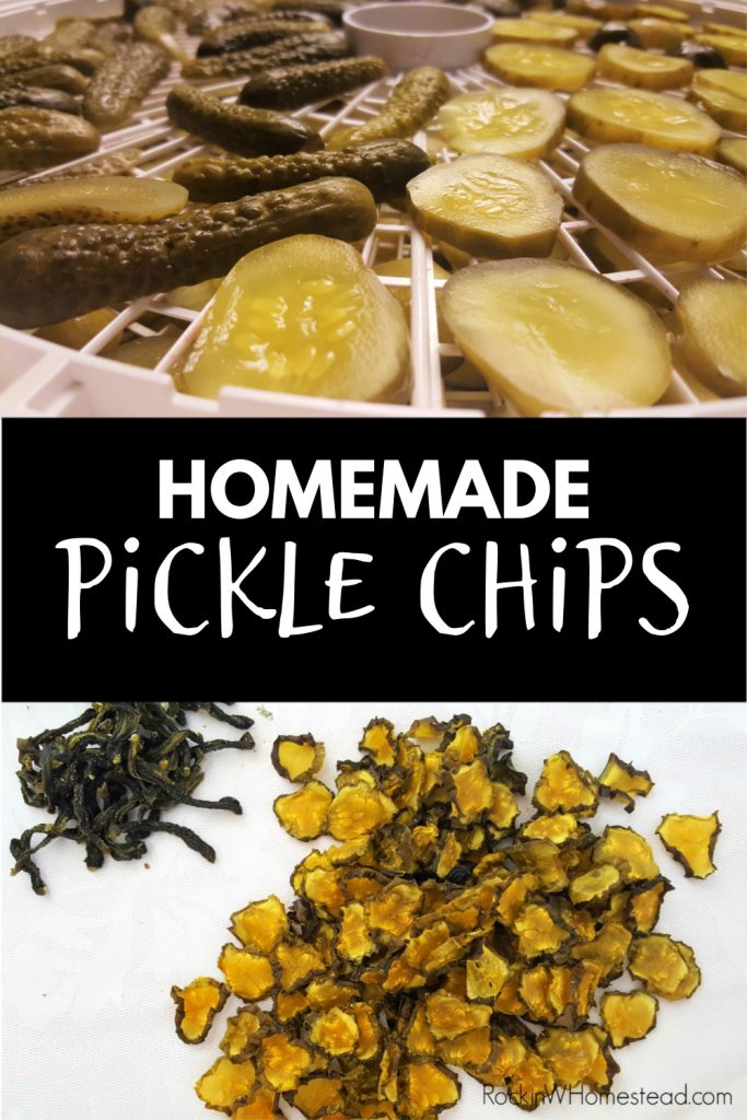 dehydrated pickle chips