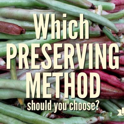 Can, Freeze, Dehydrate. Which is Best?