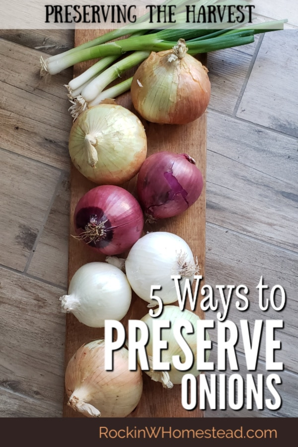 5 Ways to preserve onions for pantry storage. Details on how to freeze onions, dehydrate onions, and turn onions into onion powder.