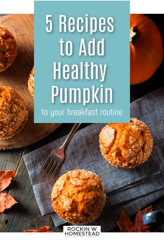 Pumpkin muffins for a healthy breakfast