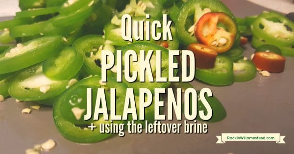 Pickling is a time-tested way to preserve food. Quick pickled jalapenos are easy to make, wonderful to eat, and adaptable to many homemade recipes. Find out how to make them and get ideas for using the leftover brine. | Rockin W Homestead