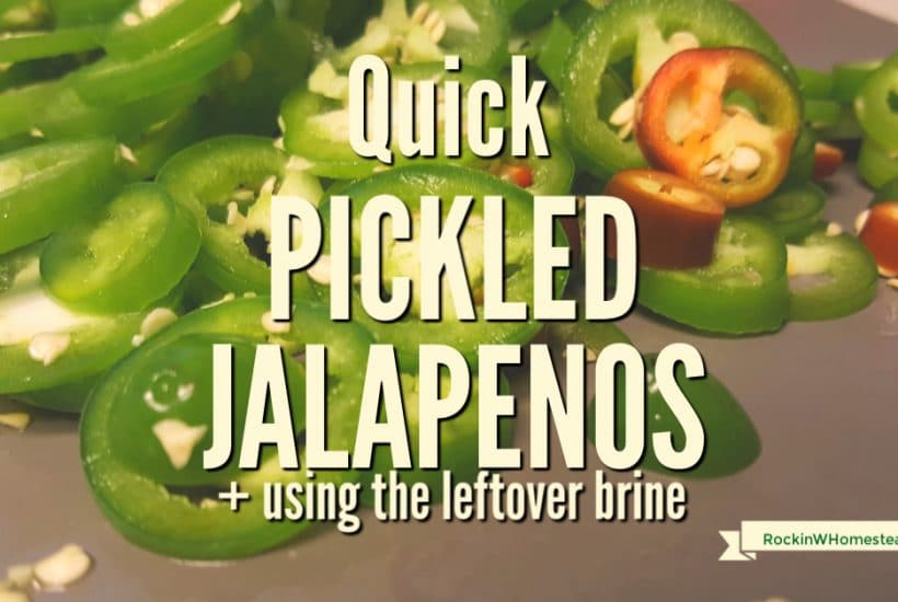 Pickling is a time-tested way to preserve food. Quick pickled jalapenos are easy to make, wonderful to eat, and adaptable to many homemade recipes. Find out how to make them and get ideas for using the leftover brine.