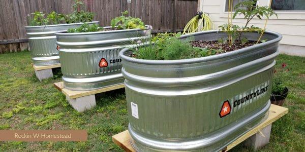 3 galvanized stock tanks used as no-bio;d raised bed gardens