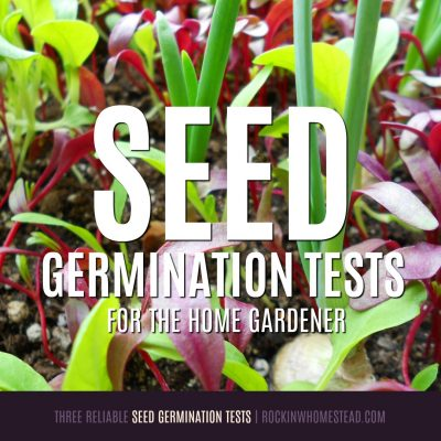 How can you tell if a seed is still viable? Here are three reliable seed germination tests you can take to seeifthere is life left in your old seed packets | Rockin W Homestead