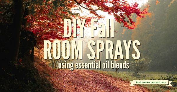 The possibilities for terrific fall fragrances are within your reach. Use these essential oil recipes and create your own room spray blends.