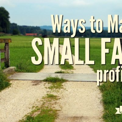 Ways to Make Your Small Farm Profitable