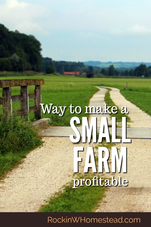 Many people with a pioneering spirit are looking for ways to live on their land and make their small farm profitable. You can make money on your homestead, but you have to be willing to work. | Rockin W Homestead