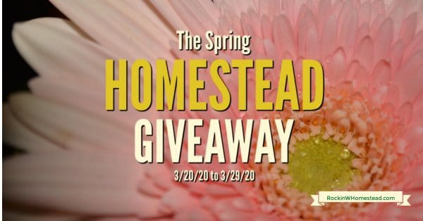 Pink Daisy Flower -The Spring Homestead Giveaway