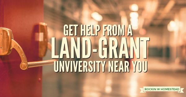Homesteaders naturally have a long list of things that can be learned to improve their self-reliance, the state land-grant university can help | Rockin W Homestead