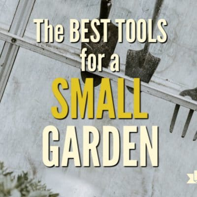 The Best Tools for Small Gardens