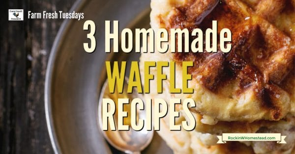 3 homemade waffle recipes for every day eats