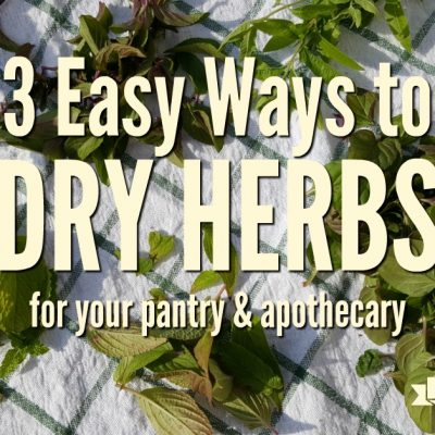 3 Easy Ways to Dry Herbs