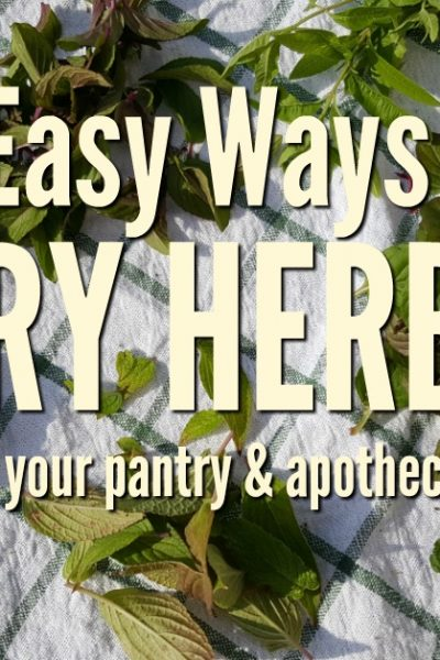 Herbs are garden favorites and are used for many culinary and medicinal purposes. When you have a stock of your own dried herbs on hand cooking, and herbal preparations become easier. These three easy ways to dry herbs will get you started on preserving your herb harvest   Rockin W Homestead