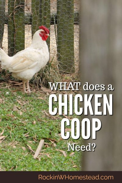 Pondering the idea of raising chickens often raises the question, what does a chicken coop need? Even if you have free range chickens in your backyard, you still need a chicken coop. | Rockin W Homestead