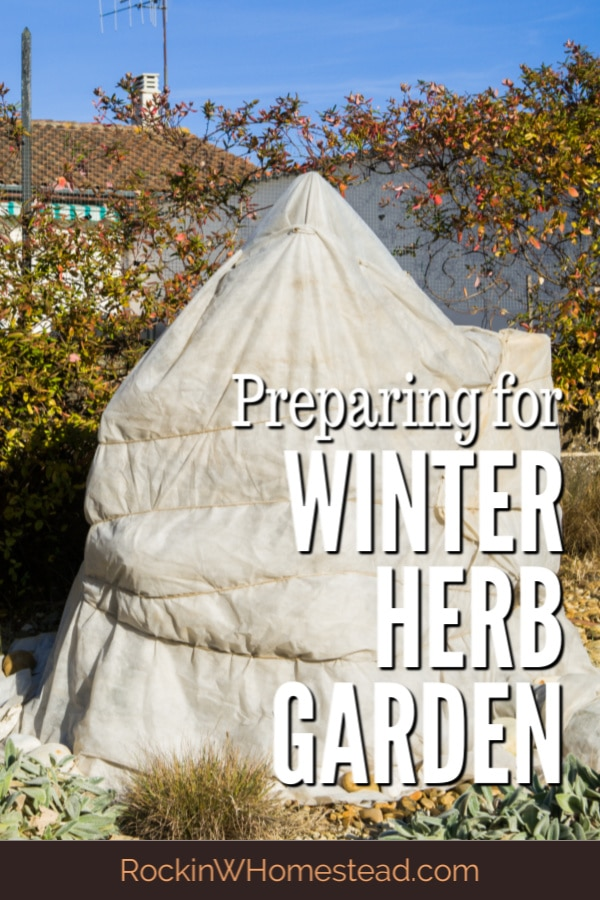 You can have your winter herb garden survive until spring when you follow a few steps for success. Learn the principles to help plants thrive and survive when it is cold outside.